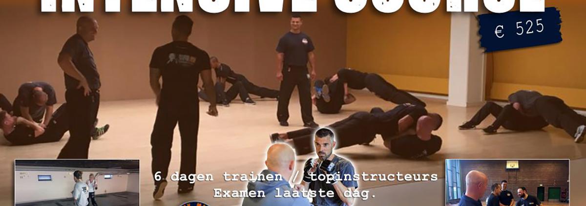HSW Intensive Course Krav Maga